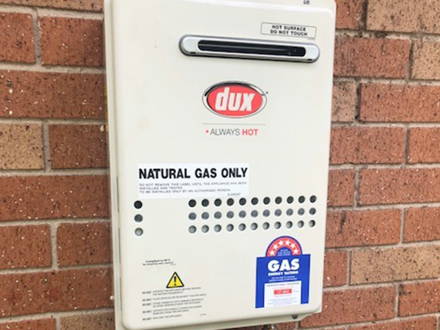 Dux Natural Gas Panel